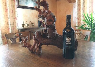 Joventura - Presentación Vinos Castillo de Aresan (2)
