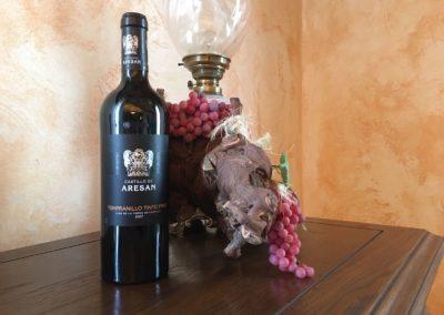 Joventura - Presentación Vinos Castillo de Aresan (3)